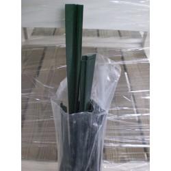 Guarnizioni Green-Silver LINE